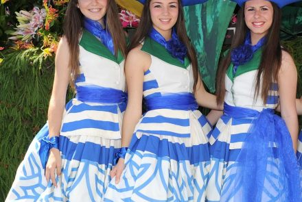 Madeira Flower Festival 2012/Project