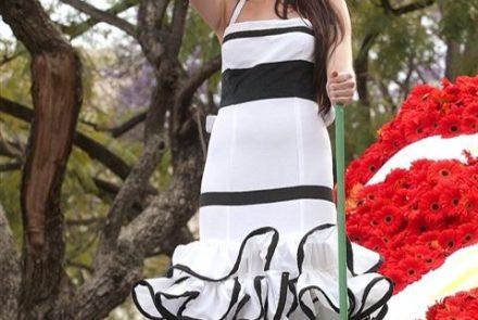 Madeira Flower Festival 2010/Project