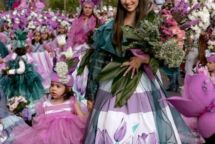 Madeira Flower Festival 2009/Project