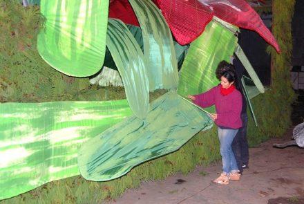 Madeira Flower Festival 2010/Float Making of