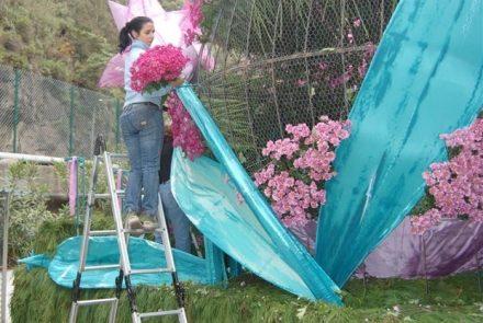 Madeira Flower Festival 2009/Float Flowers
