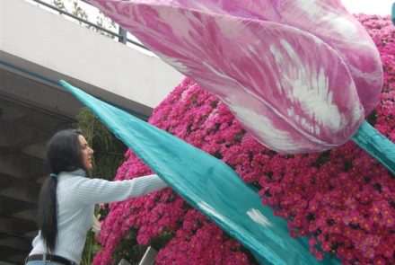Madeira Flower Festival 2009/Float Flowers