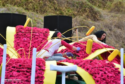 Madeira Flower Festival 2012/Float Flowers