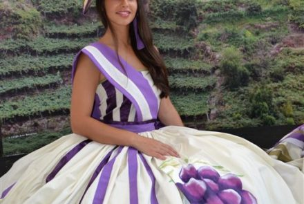 Madeira Wine Festival 2013/Project