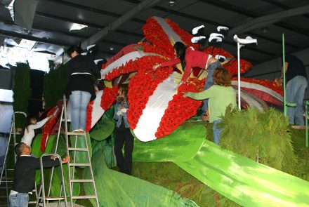 Madeira Flower Festival 2010/Float Flowers