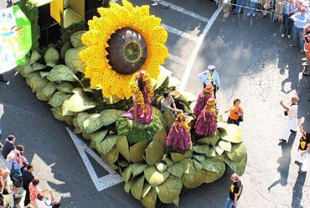 Madeira Flower Festival 2007/Float Flowers