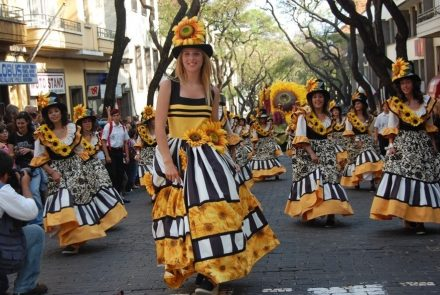 Madeira Flower Festival 2007/Flores do Sol