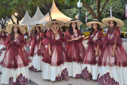 Madeira Wine Festival 2012/Project