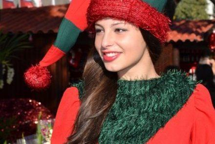 "End of the Year Festivities 2012/""Mercadinho de Natal"""