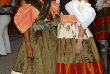 Madeira Wine Festival 2006/Project