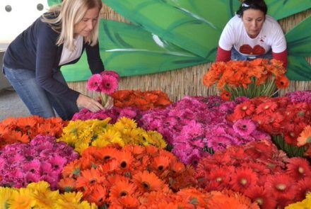 Madeira Flower Festival 2014/Float Flowers