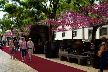 Madeira Wine Festival 2014/Project