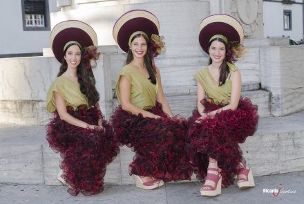 Madeira Wine Festival 2014/Grapes in Festivity