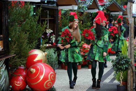 End of the Year Festivities 2014/Christmas Market
