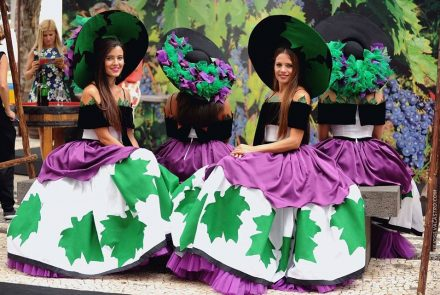 Madeira Wine Festival 2015/Madeira Terrantez
