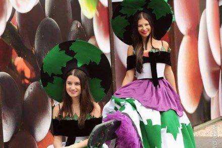Madeira Wine Festival 2015/Project