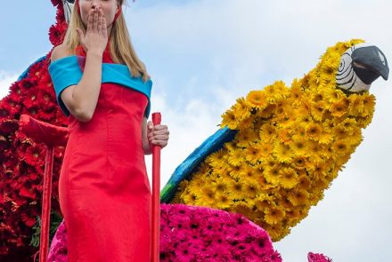 Madeira Flower Festival 2015/Float Making of