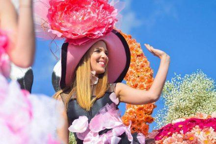 Madeira Flower Festival 2016/Pink Ladies