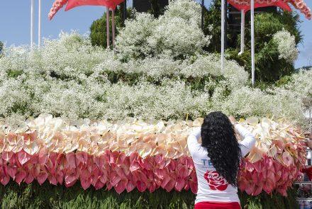 Madeira Flower Festival 2016/Float Flowers