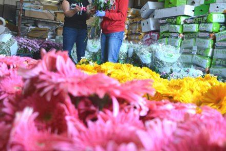 Madeira Flower Festival 2018/Flower Bouquets