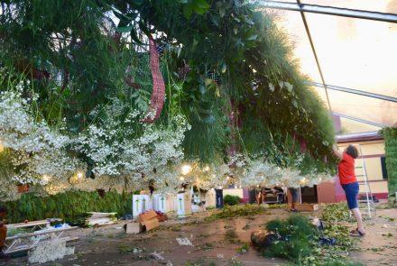 Entronização Príncipe Alberto II do Mónaco/Flower Decoration