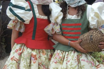 Madeira Wine Festival 2007/Project