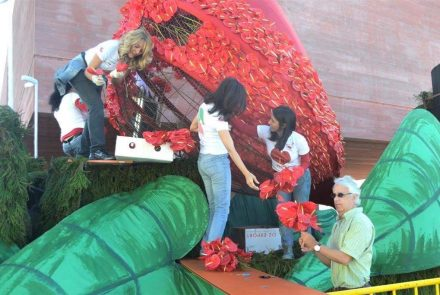 Madeira Flower Festival 2013/Float Flowers
