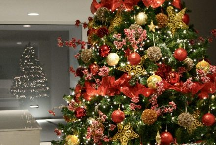 Christmas Decoration VI