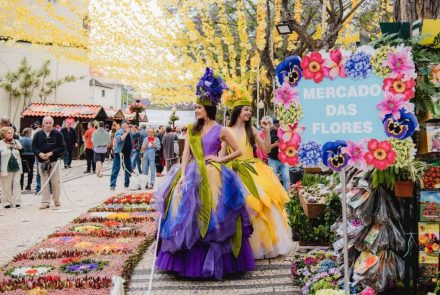 Flower Market in the City of Funchal/Project