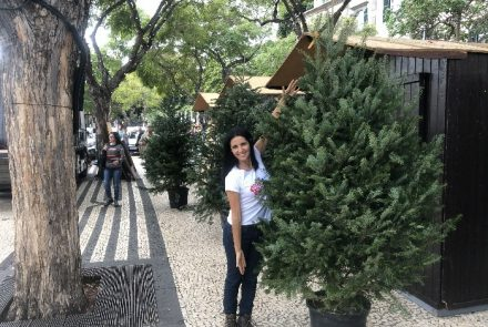 End Of The Year Festivities 2019/Christmas Market/Making of